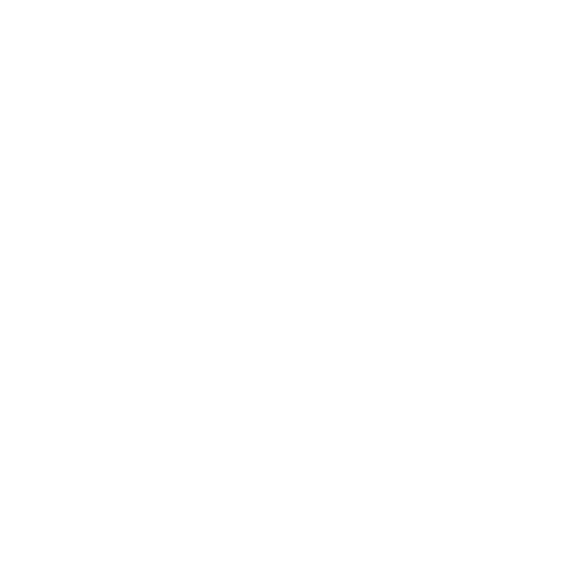 phone_icon_white